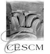 CESCM1_nb.jpg
